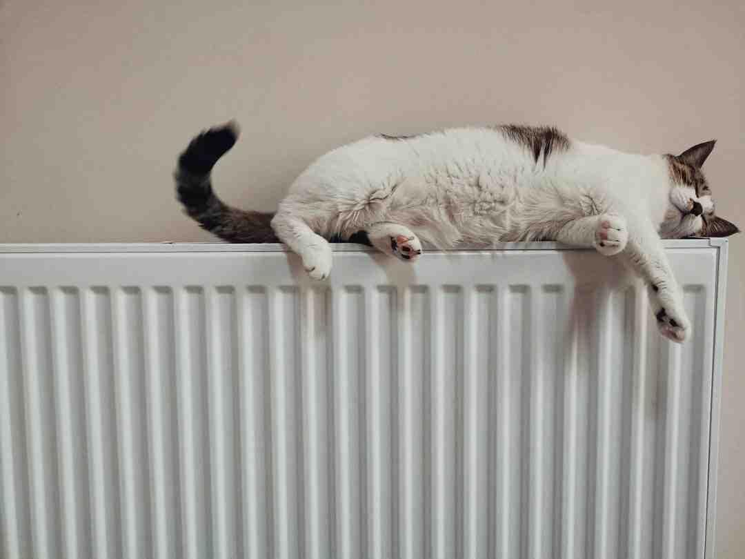 Comment fermer un radiateur qui fuit